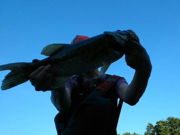 河口湖 ブラックバス 47cm